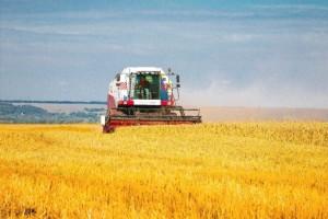 Сельское-хозяйство-696x464